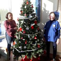 2018 Christmas Trees
